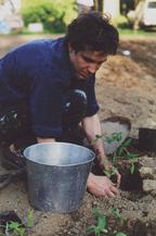 Charlie Harrison planting